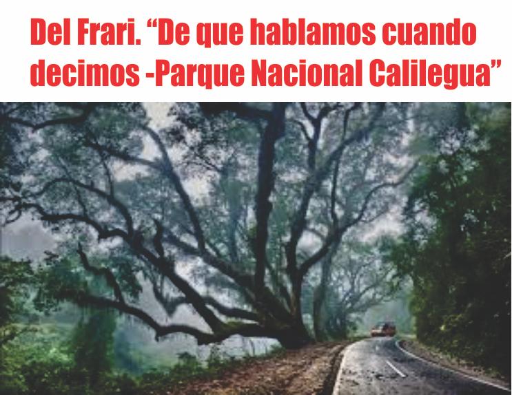 Del Frari: De que hablamos cuando decimos «Parque nacional Calilegua»