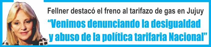 Liliana Fellner destacó el freno al tarifazo del servicio de gas en Jujuy