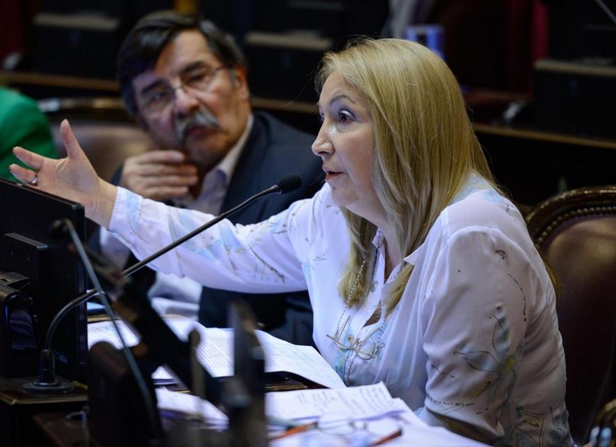 Ante la llegada de Buryaile, la senadora de la UCR asegura que Jujuy abre las puertas a las inversiones
