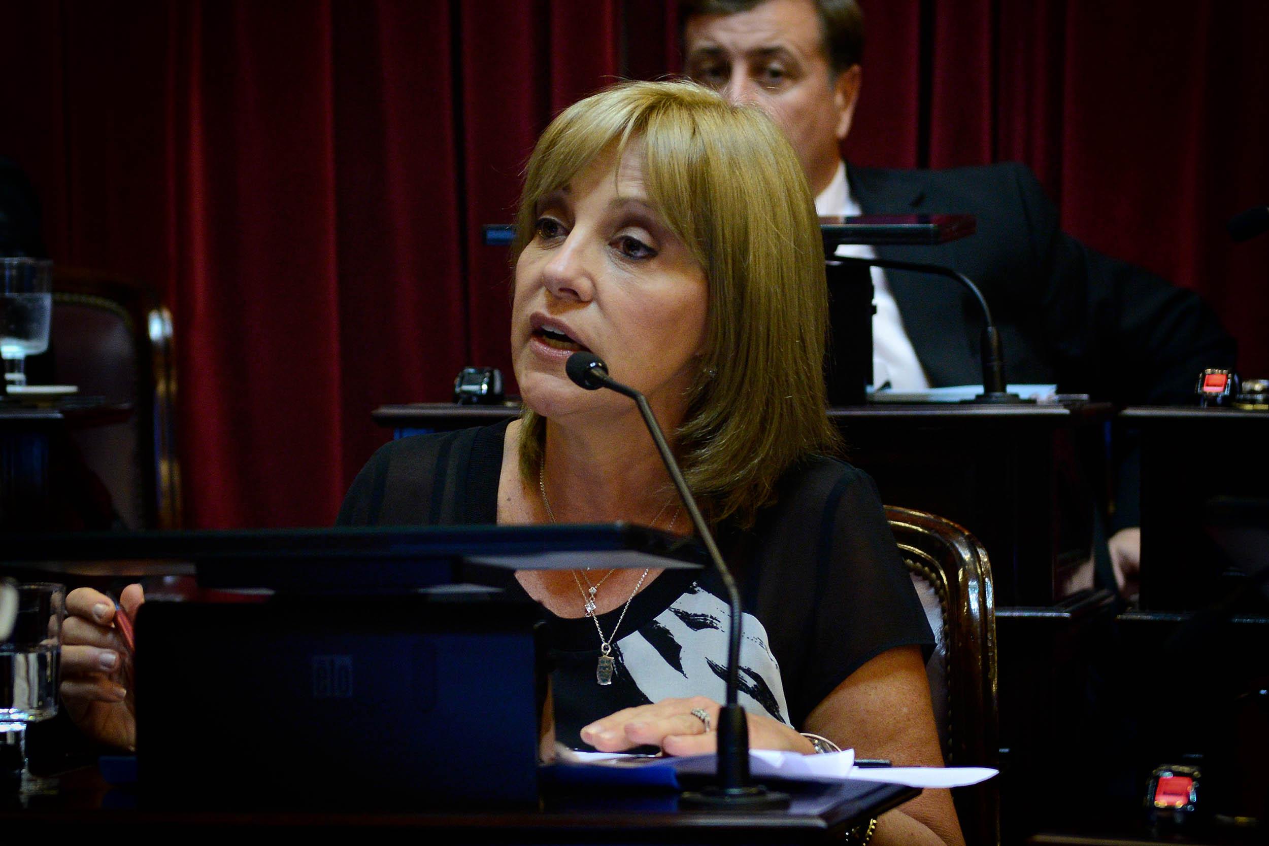 Liliana Fellner: «Las mujeres jujeñas seguimos gritando Ni Una Menos»