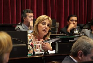 senadora-nacional-liliana-fellner
