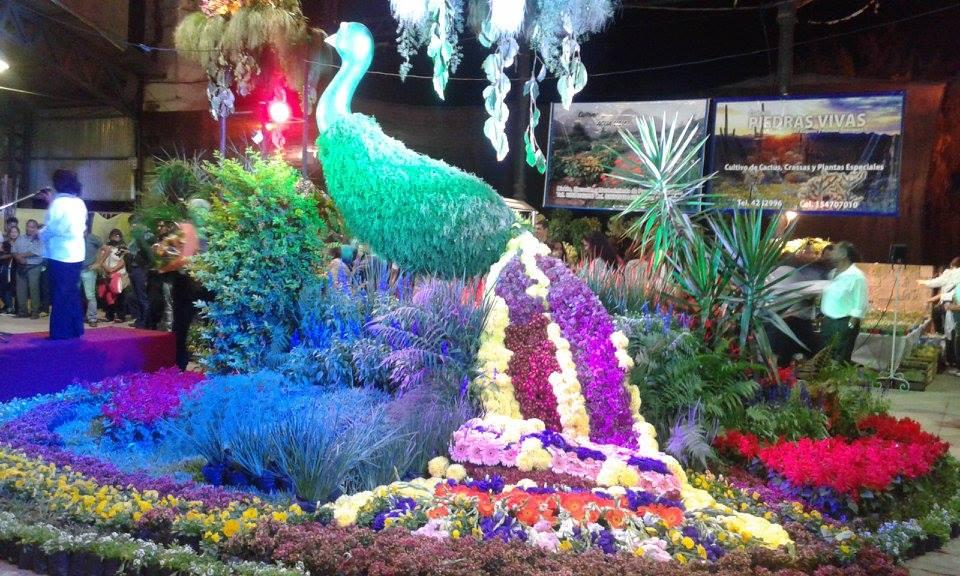 Anuncian La VI Fiesta Provincial de la Floricultura