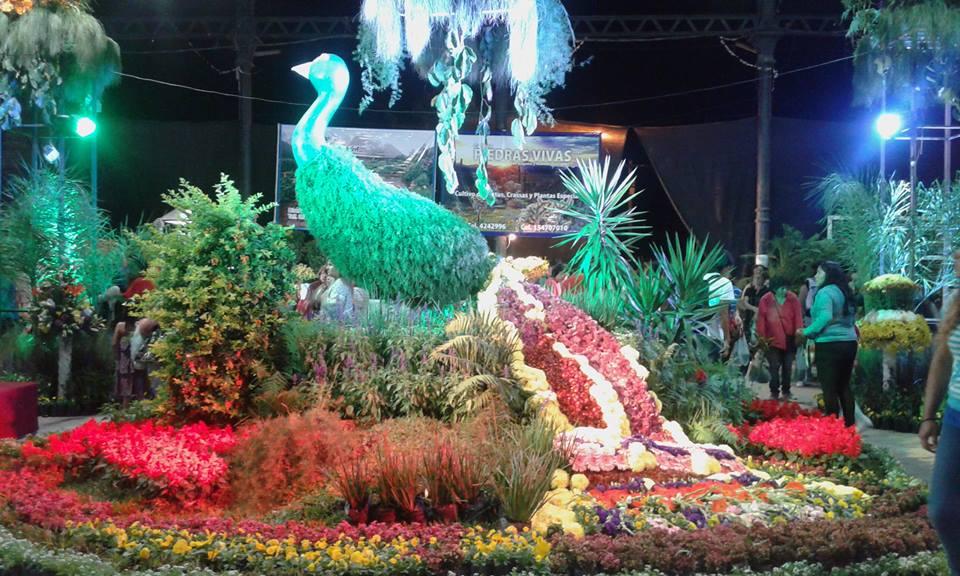 Fiesta Provincial de la Floricultura