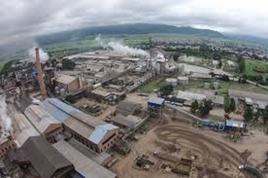 El mayor productor de azúcar del país se asocia con la japonesa Mitsui & Co