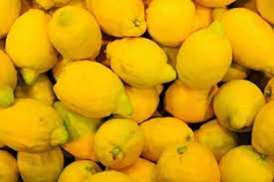 Decomisaron en Jujuy 9 toneladas de limones y naranjas del NEA