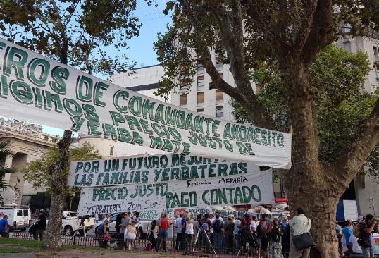 #Yerbatazo: 30.000 paquetes de yerba por una audiencia con Macri
