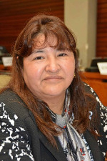 Diputada solicitó gestiones para establecer zona franca en la Puna