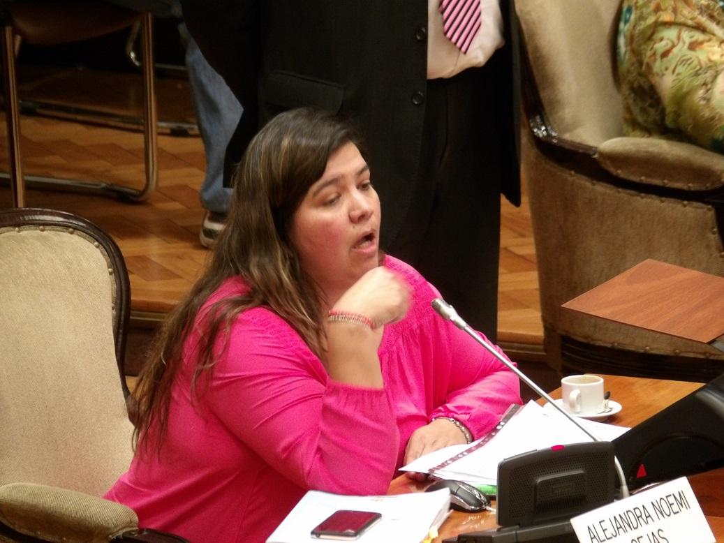 ¿Vínculos del gobierno de Jujuy con empresa aérea Flybondi?