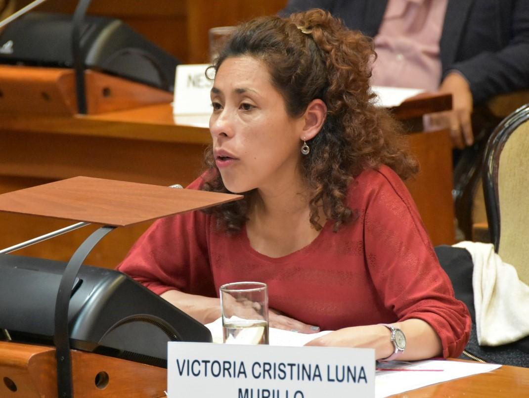 Murillo: «La ayuda social es la más importante de los últimos tiempos»