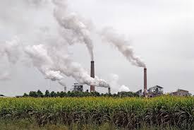 La Nación analiza mejorar precios de biodiesel para evitar cierre de productores