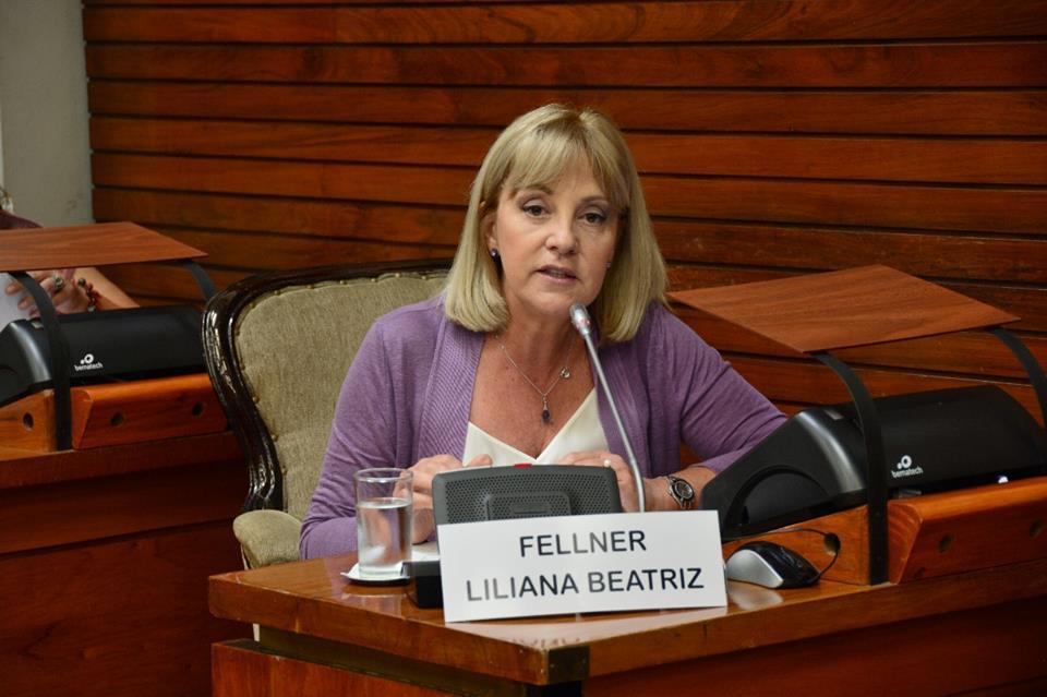 Fellner: «funcionarios del gobierno ofrecen a los comuneros un monto vil por sus terrenos»
