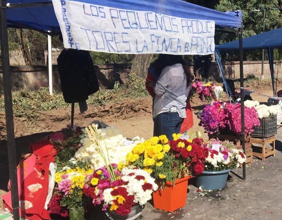 Los floricultores tendrán punto fijo de ventas