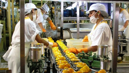 La Industria de Alimentos y Bebidas demanda una agenda de reconstrucción