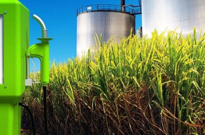 El Defensor del Pueblo se sumó al pedido de prórroga de biocombustibles