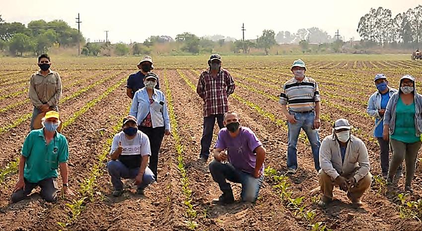 Realizarán la 3° etapa del ensayo sobre el manejo sustentable de suelos tabacaleros
