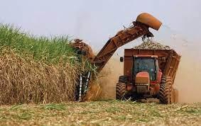 La actividad cañera sin el bioetanol no tiene sostenibilidad